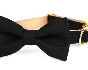 Crew LaLa™ Black Onyx Bow Tie Dog Collar