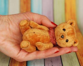 RESERVED! Miniature teddy, miniteddy, minibear Cinnamon, the teddy bear