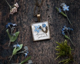 Blue Flowers Forget-me-not - spring botanical gift for nature lovers - bridesmaid jewelry secret garden wedding idea
