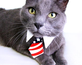 Dog/Cat American flag necktie/bowtie on a shirt style collar