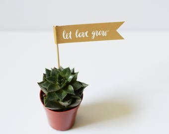 Gold Let Love Grow Flags for succulents