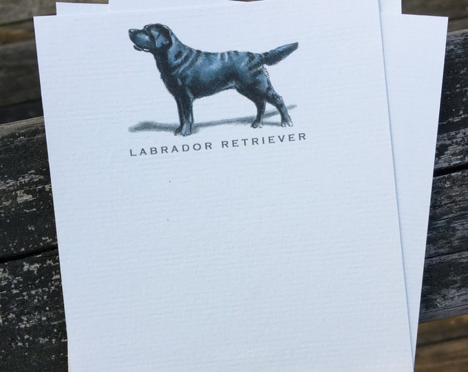 Black Labrador Retriever Dog Note Card Set