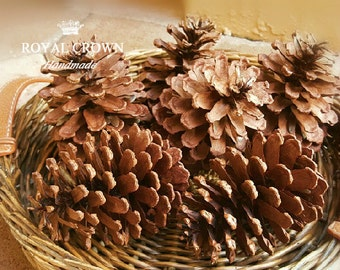 Pine cone decor,pine cones natural,pine cone natural,decorative pine cones,large pine cones,pine cone favors,pinecone favors,woodland decor