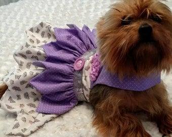 Pretty purple small dog dress