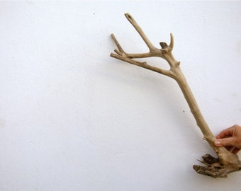 Large Driftwood, Driftwood Branch, Driftwood For Crafts, Wood Supply, Driftwood Decor, Rustic