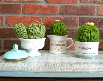 Cactus in simple knit (decoration)