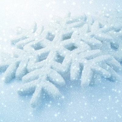 SnowBerryNeedleArts