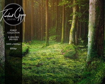 Magic Forest Collection - 3 Digital Backgrounds!