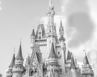 Cinderella's Castle Photo in Orlando, Florida at Disney World 12x16