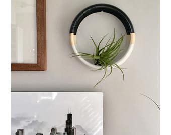 Wall Hanging Air Plant Holder, Large Wall Hanging Planter, Modern Plant Holder, Wall Decor, Hanging Plant Holder, Air Plant Holder