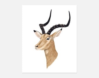 Antelope Watercolor Painting, Antelope Art Print, Antelope Pictures, Pictures of Antelope, Decorative Wall Art, Home and Decor