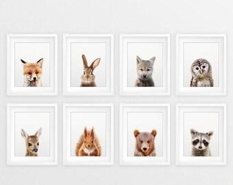Woodland Nursery Decor, Baby Animals Set 8, Fox Bear Deer Wolf Rabbit Print, Nursery Animal Prints, Woodland Animal, Kids Room Printable Art
