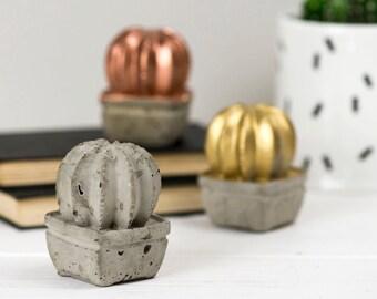 Concrete Cactus – Concrete Homeware – Cactus Gift – Cactus Ornament –Contemporary Homeware