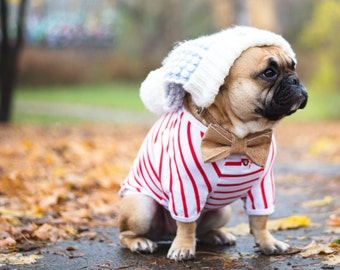 DOG  T-SHIRT, Dog stripped t-shirt, Dog Clothing