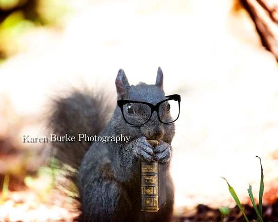 Black Squirrel Print Bookworm Whimsical Wall Art