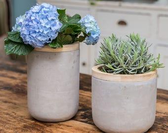 Large Concrete and Wood plant pot