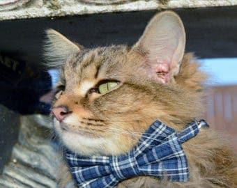 Blue plaid cat bow tie collar, Plaid collar, cat collar, Plaid cat bow tie, kitten bow tie, kitten Cat costume, cat tie, cat bow tie