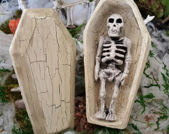 Miniature Skeleton in a Coffin