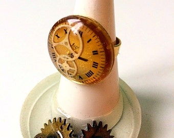 Adjustable dial and resin ring gears