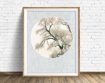 "nature photography, large art, large wall art, printable art, instant download printable art, nature prints, wall art prints -""Bare Limbs"""