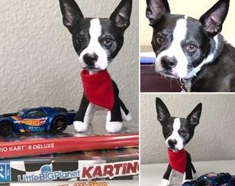 Personalized Pet - Boston Terrier, Bull Dog