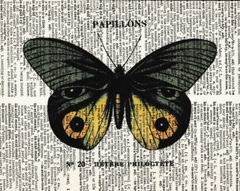 5x7 | Butterfly | Butterfly Lover | Butterfly Picture | Yellow Butterfly | Butterfly print | Re-purposed Dictionary | Gift For Friend
