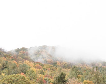 Blue Ridge Parkway - Foggy Fall Morning 2/4 - Vertical