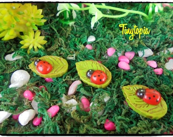 Ladybug Stepping Stones  (Set of 3)  Miniature Fairy Garden Accessory