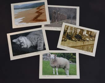 Variety Pack - blank notecards with original photography