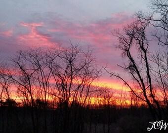 Beautiful pink sunrise photo