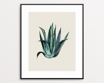 Agave Print - Succulent - Botanical Print - Botanical Illustration - Botanical Art - Wall Art - Agave Plant - Giclee - Modern Home Decor