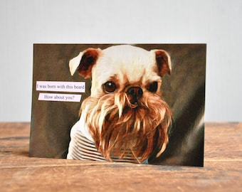 Pet Postcard. Made in USA. 17-7