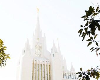 San Diego Temple 7