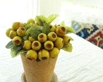 Eucalyptus Pods Arrangement, Artificial arrangement, Artificial floral arrangement, botanical, terracotta arrangements