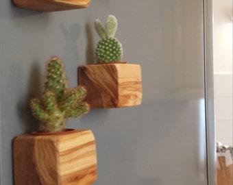 Mini wooden vase-cactus-MAGNET-magnet-craft, handmade!