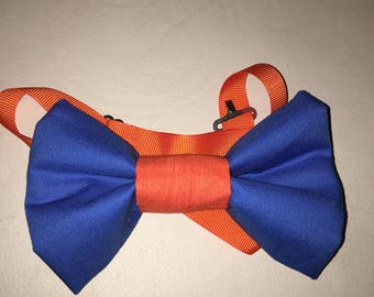 Blue and orange bow tie