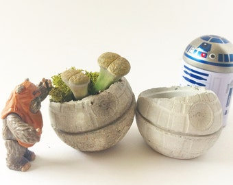 Concrete Death Star succulent planter with moss