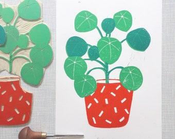 Pilea  'A4 limited edition (15) handprinted linocut print'
