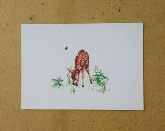 Fawn Watercolor Artwork Print