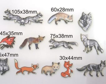 12 X Foxes and Wolves