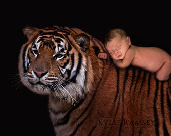 Tiger Overlay, Newborn, PSD File, Digital Image, Photo Manipulation, Tiger Background, Newborn Backdrop, Tiger Backdrop, Portrait Backdrop