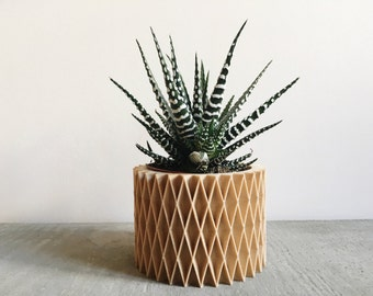 Minimalist Geometric Wood Planter for succulents or cacti / Made in France / CROIX DE BOIS