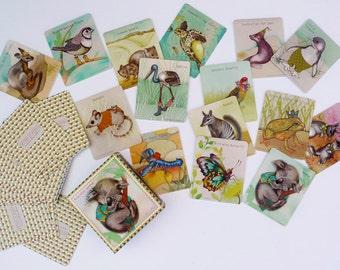Memory Card Game - Australian Animals - 15 matching pairs
