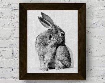 black and white animal print, rabbit wall art, animal print nursery, bunny photo, baby room poster, instant digital download, printable art