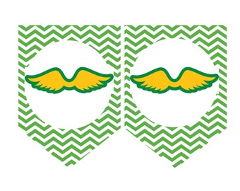 Girl Scout Juniors Banner