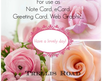 Greetings | Floral Note Cards | Floral Graphics | Floral Design Graphics | Pastel Roses Cards | Greeting Card Message | Blog Graphics |