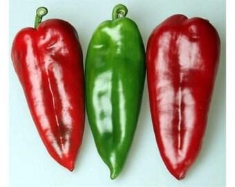 Sweet Pepper Kurtovska Kapija - Old Serbian variety (300 SEEDS)