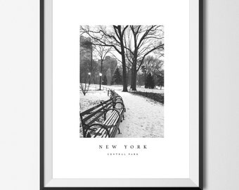 Central park in snow print