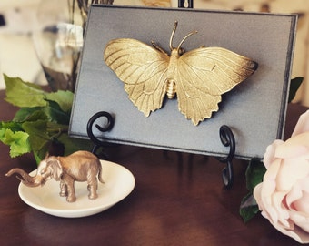 Butterfly Home Decor, Gold Faux Butterfly Taxidermy, Insect Plaque, Wall  Art, Home