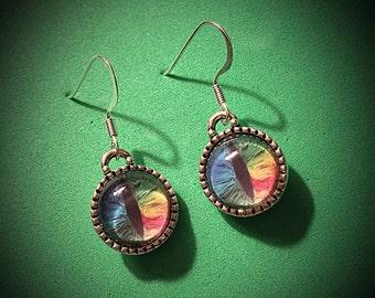 Multicolored eye earrings